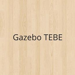 Gazebo TEBE